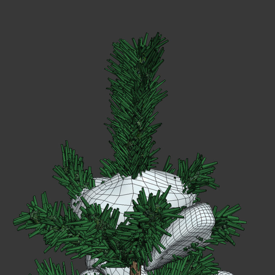 Kar köknar royalty-free 3d model - Preview no. 5