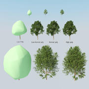 Summer collection of 10 trees. 3d model