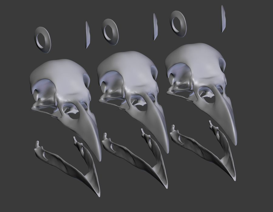 Raven skalle royalty-free 3d model - Preview no. 14