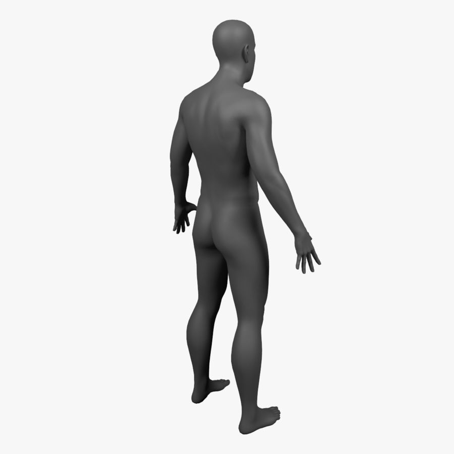 Male Body - Rigged royalty-free 3d model - Preview no. 5