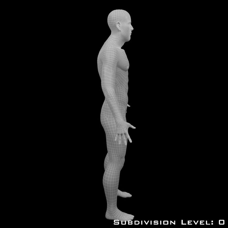 Male Body - Rigged royalty-free 3d model - Preview no. 13