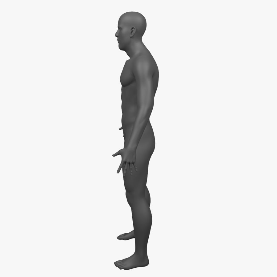 Male Body - Rigged royalty-free 3d model - Preview no. 8