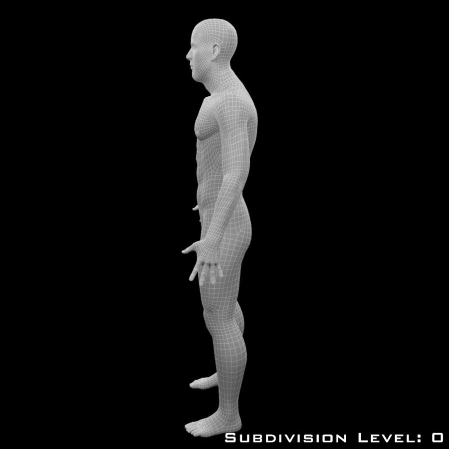 Male Body - Rigged royalty-free 3d model - Preview no. 17
