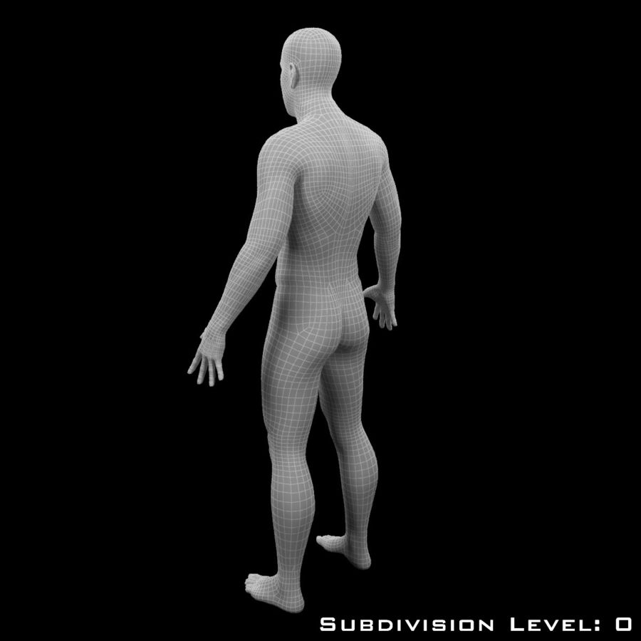 Male Body - Rigged royalty-free 3d model - Preview no. 16