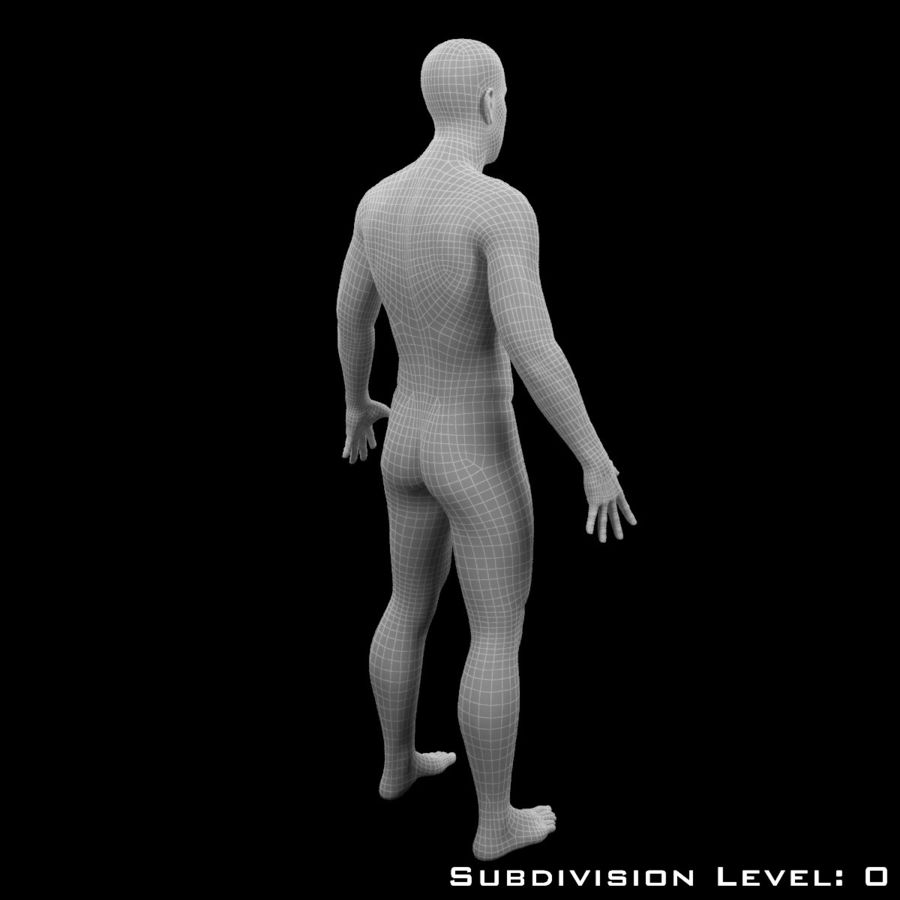 Male Body - Rigged royalty-free 3d model - Preview no. 14