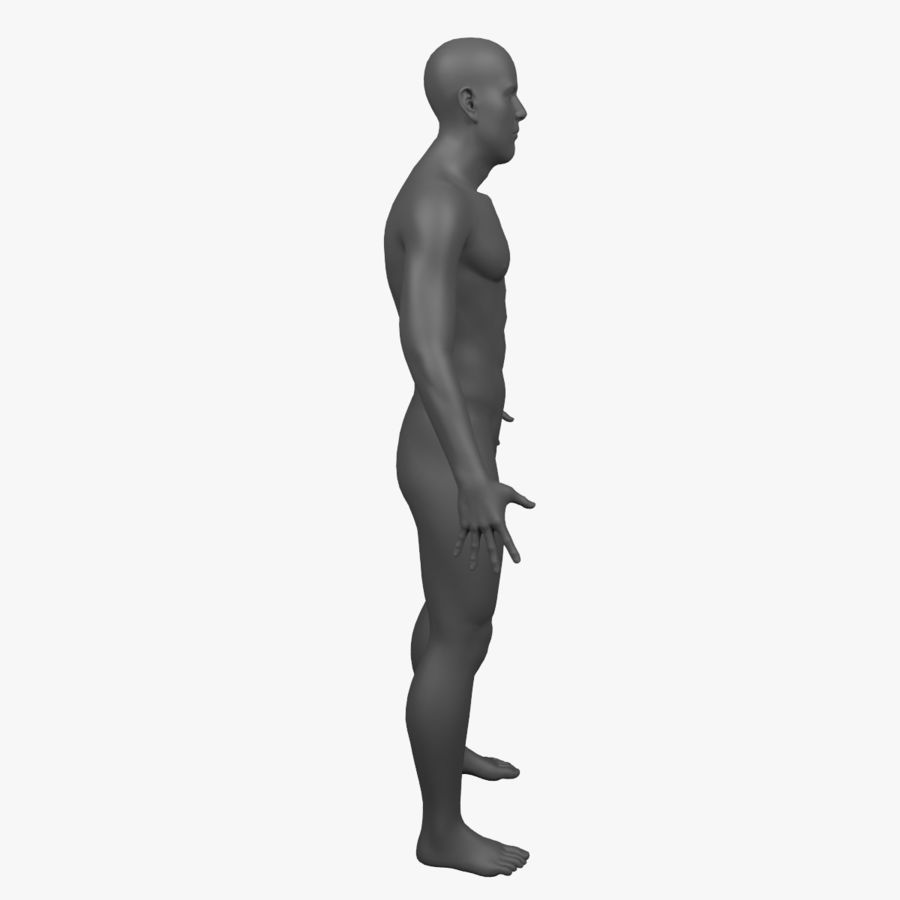 Male Body - Rigged royalty-free 3d model - Preview no. 4