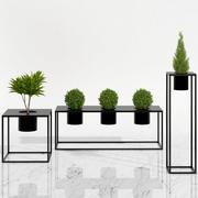 plantas de sala 05 3d model