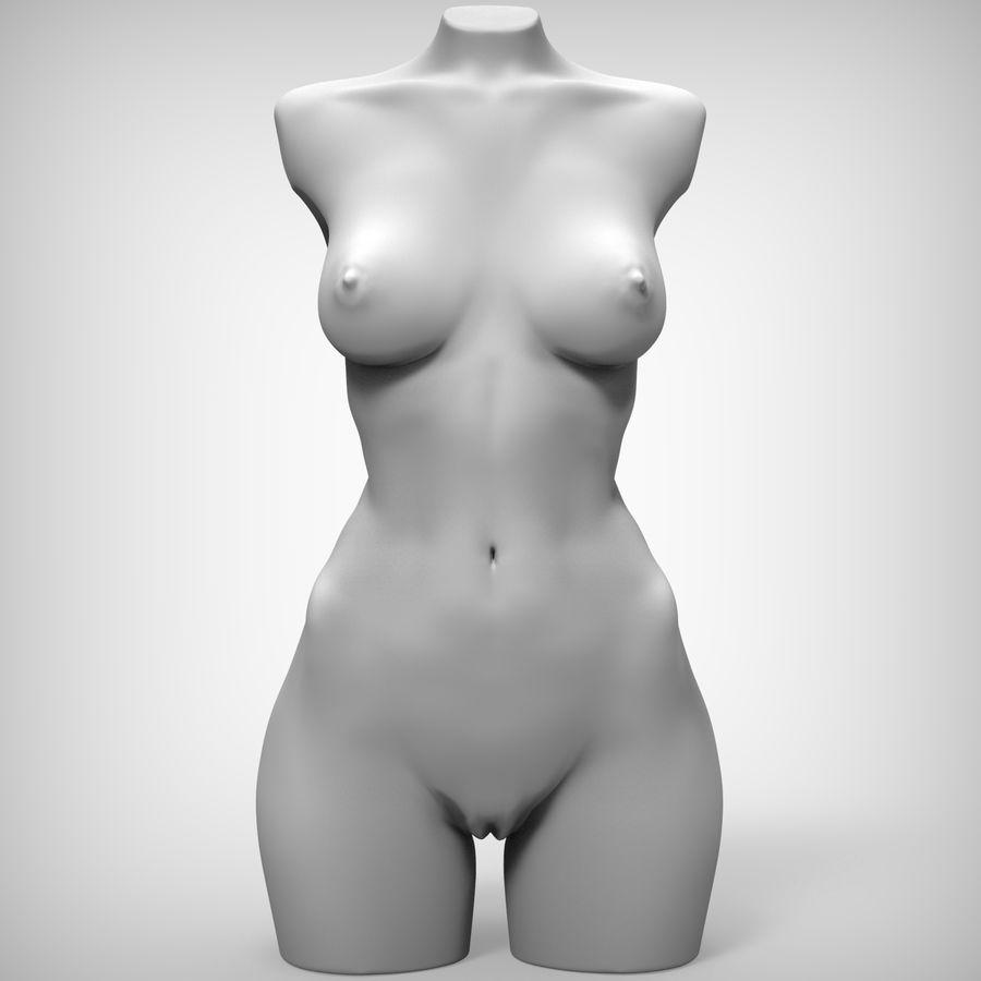 Tułów piękna kobieta royalty-free 3d model - Preview no. 4