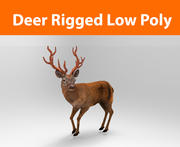 red deer rigged model loy poly 3d model