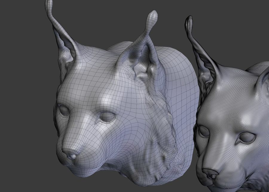 lynx head royalty-free 3d model - Preview no. 12