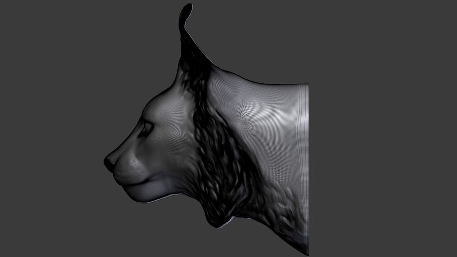 lynx head royalty-free 3d model - Preview no. 8