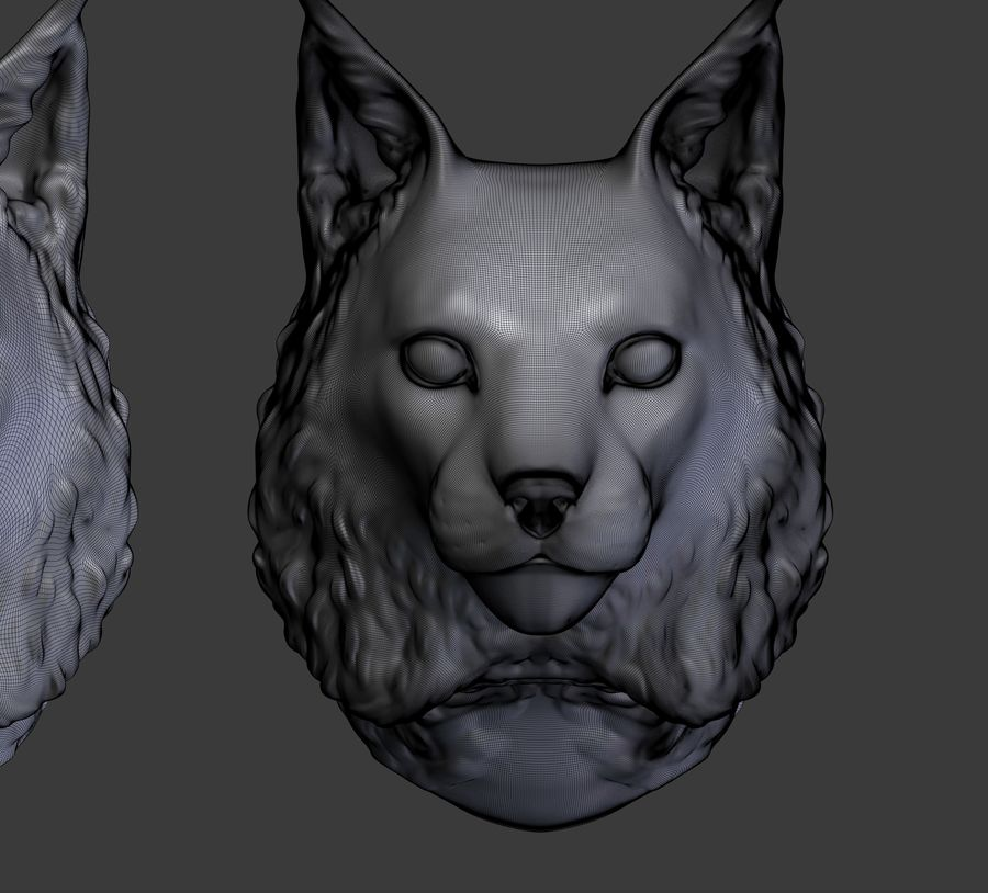 lynx head royalty-free 3d model - Preview no. 17