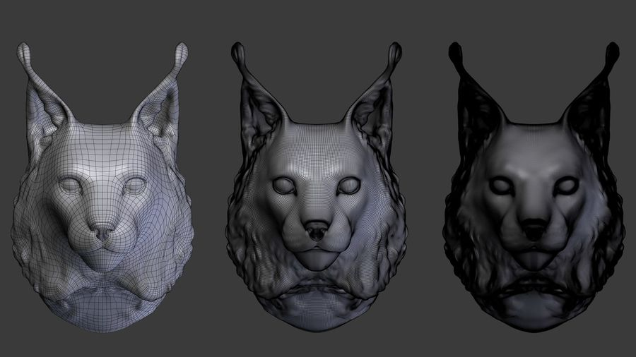 lynx head royalty-free 3d model - Preview no. 4