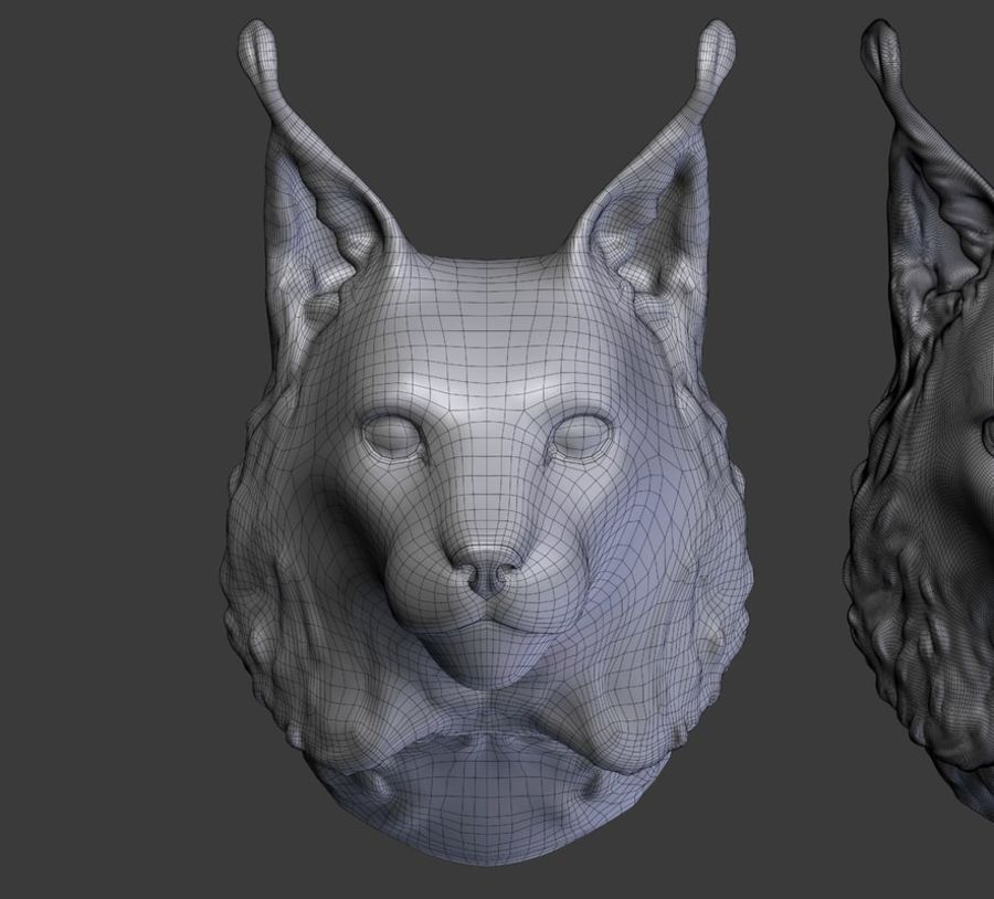 lynx head royalty-free 3d model - Preview no. 15