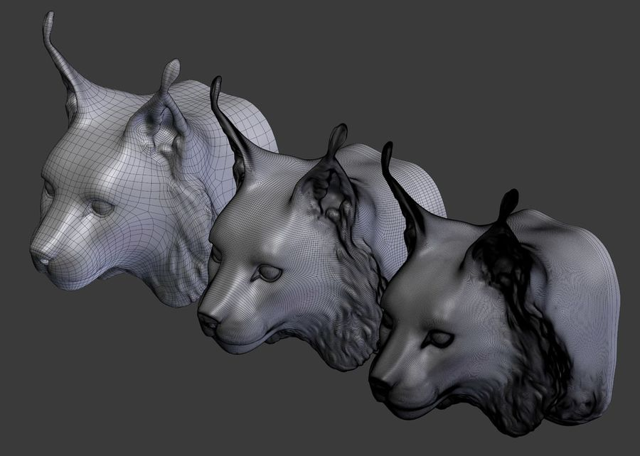 lynx head royalty-free 3d model - Preview no. 11