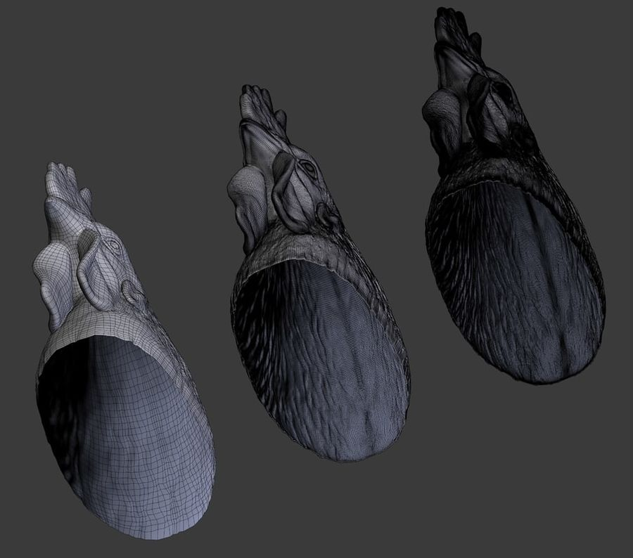 Голова петуха royalty-free 3d model - Preview no. 12