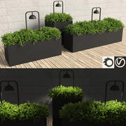 Hedge Shrubs with Fitted Lamps 3d model