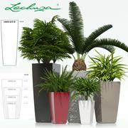 plant 21 Lechuza CUBICO 3d model