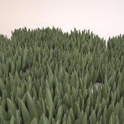 Ice Plant Ground Cover 3d model
