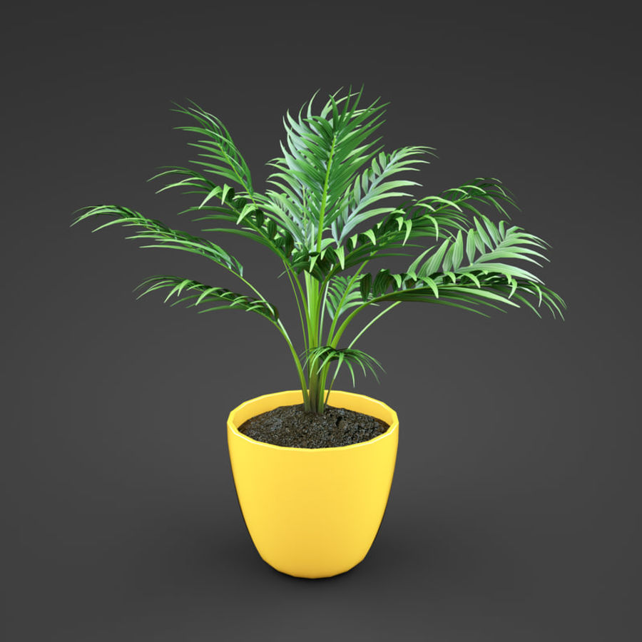 Set Home Plant royalty-free 3d model - Preview no. 39