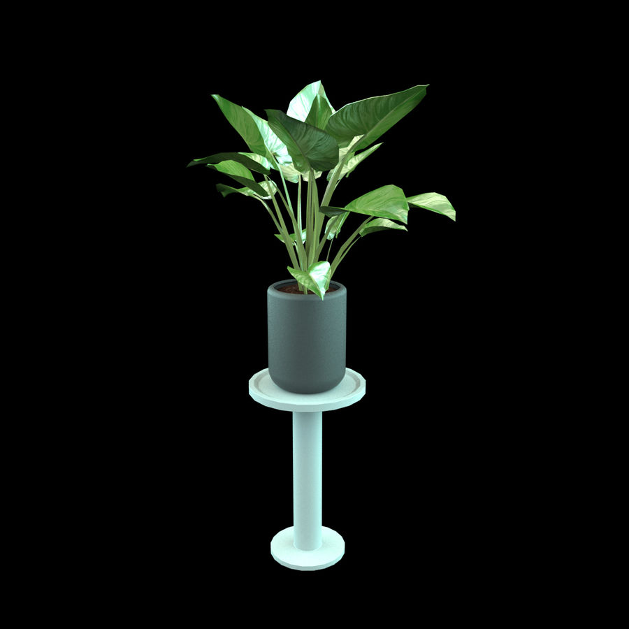 Set Home Plant royalty-free 3d model - Preview no. 8
