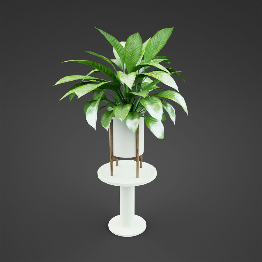 Set Home Plant royalty-free 3d model - Preview no. 17