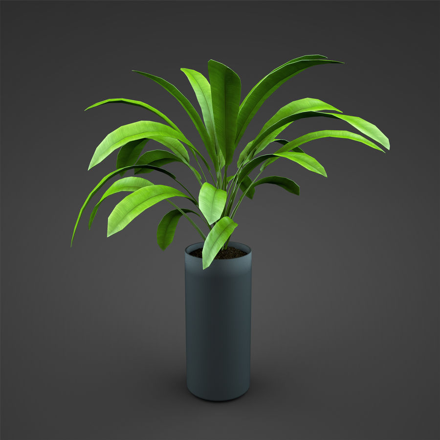 Set Home Plant royalty-free 3d model - Preview no. 23