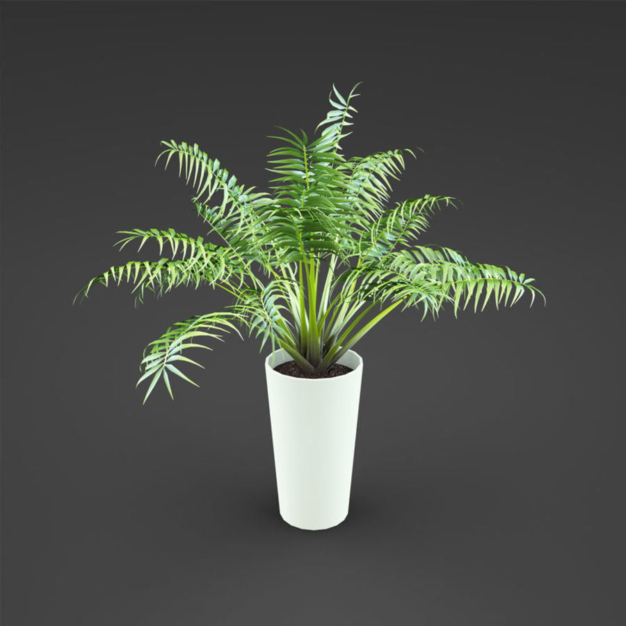 Set Home Plant royalty-free 3d model - Preview no. 33
