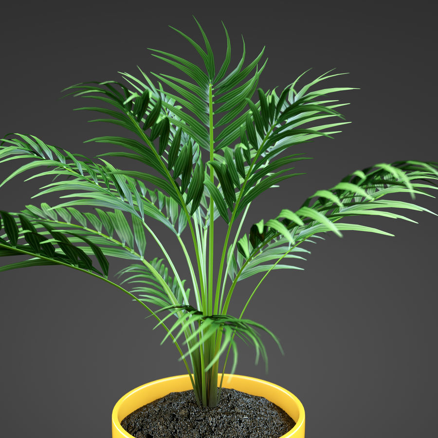 Set Home Plant royalty-free 3d model - Preview no. 40