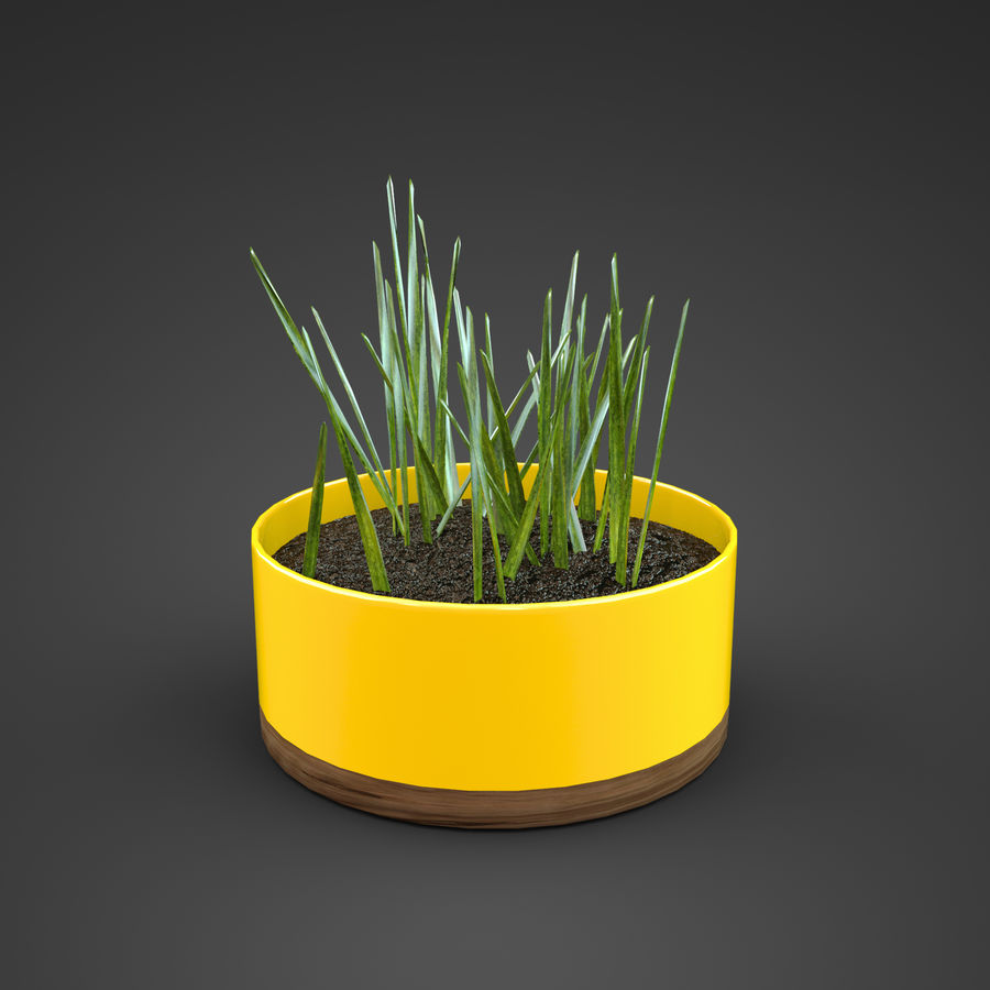 Set Home Plant royalty-free 3d model - Preview no. 13