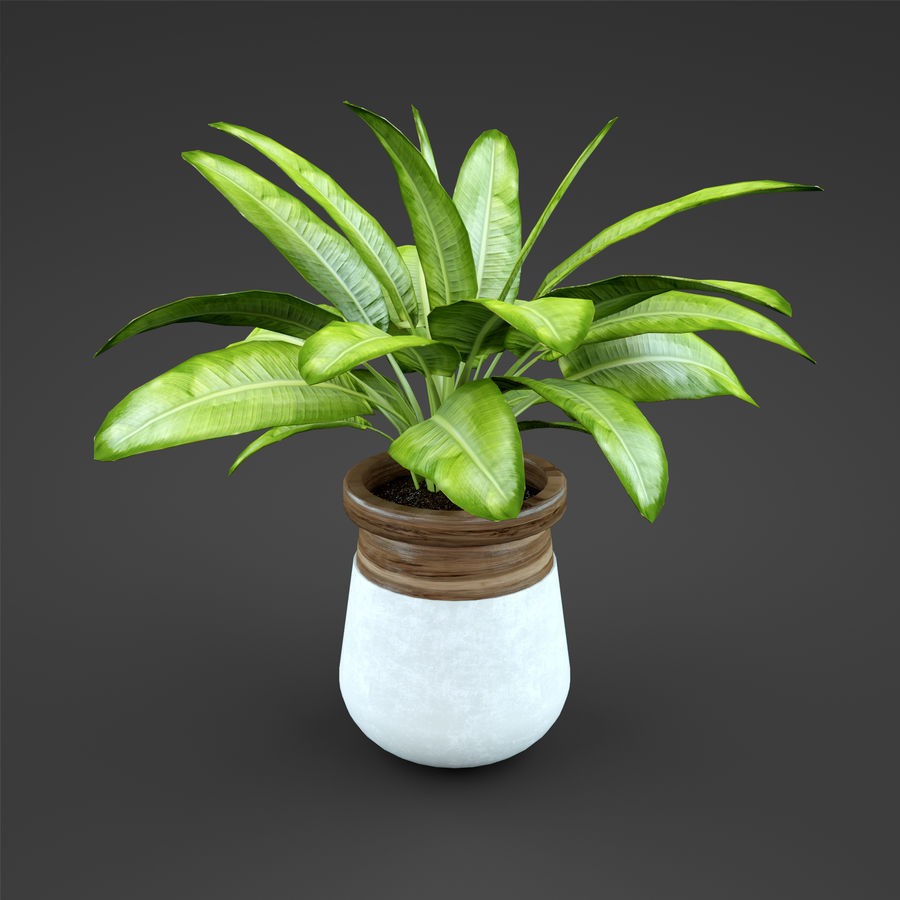 Set Home Plant royalty-free 3d model - Preview no. 31