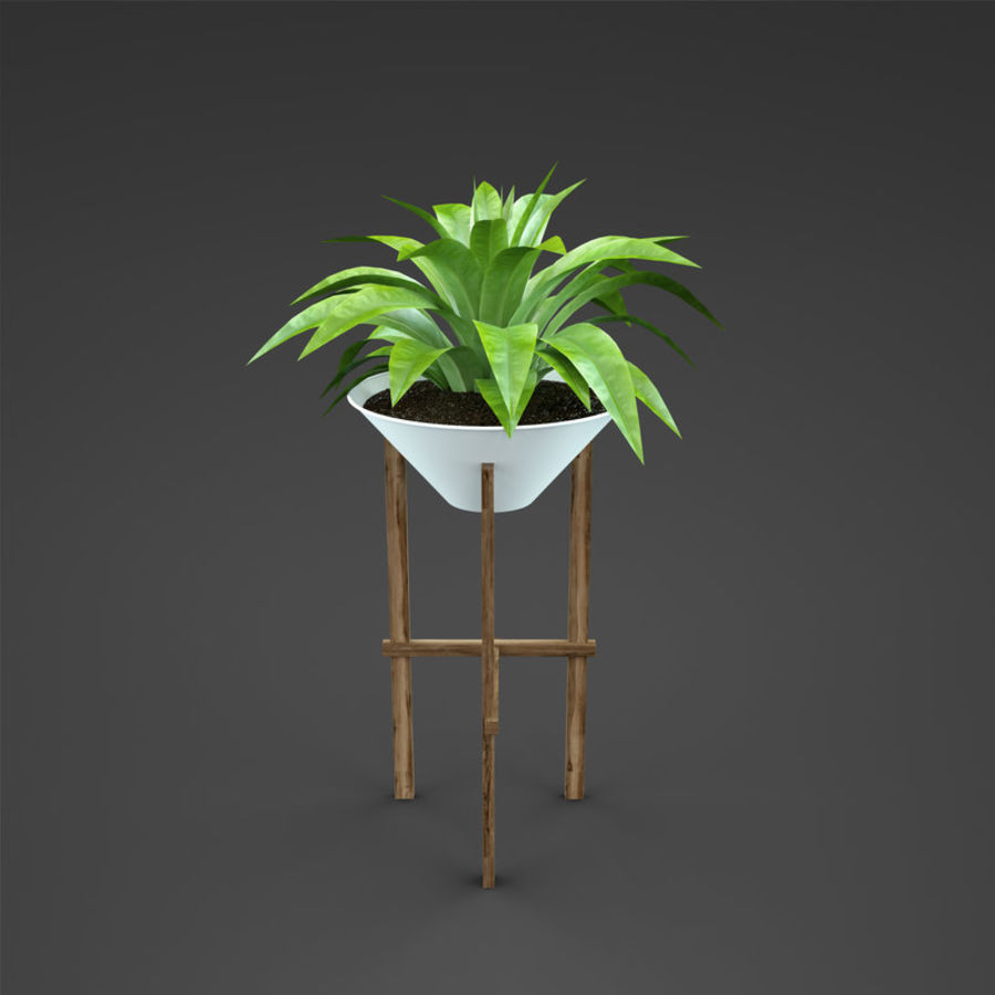 Set Home Plant royalty-free 3d model - Preview no. 35