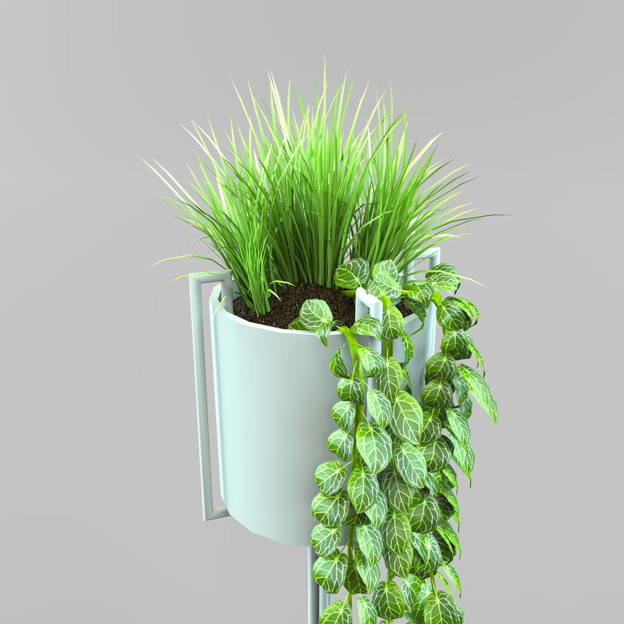 Set Home Plant royalty-free 3d model - Preview no. 10