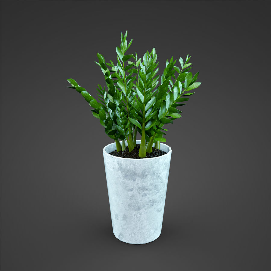 Set Home Plant royalty-free 3d model - Preview no. 25