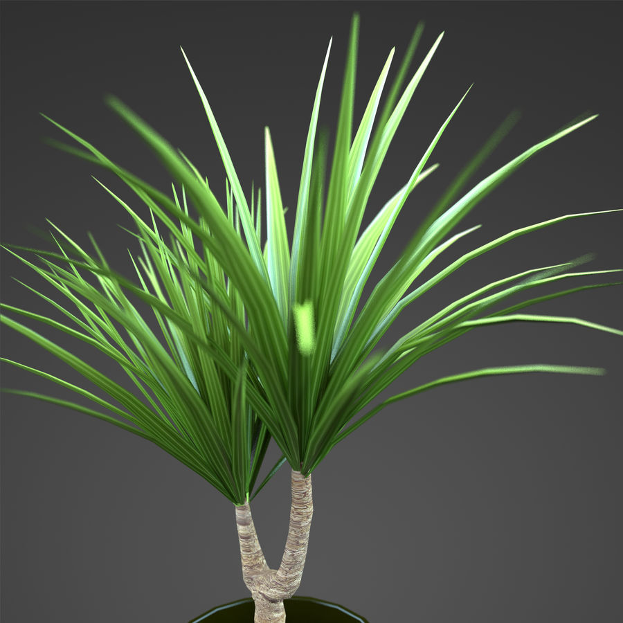 Set Home Plant royalty-free 3d model - Preview no. 28