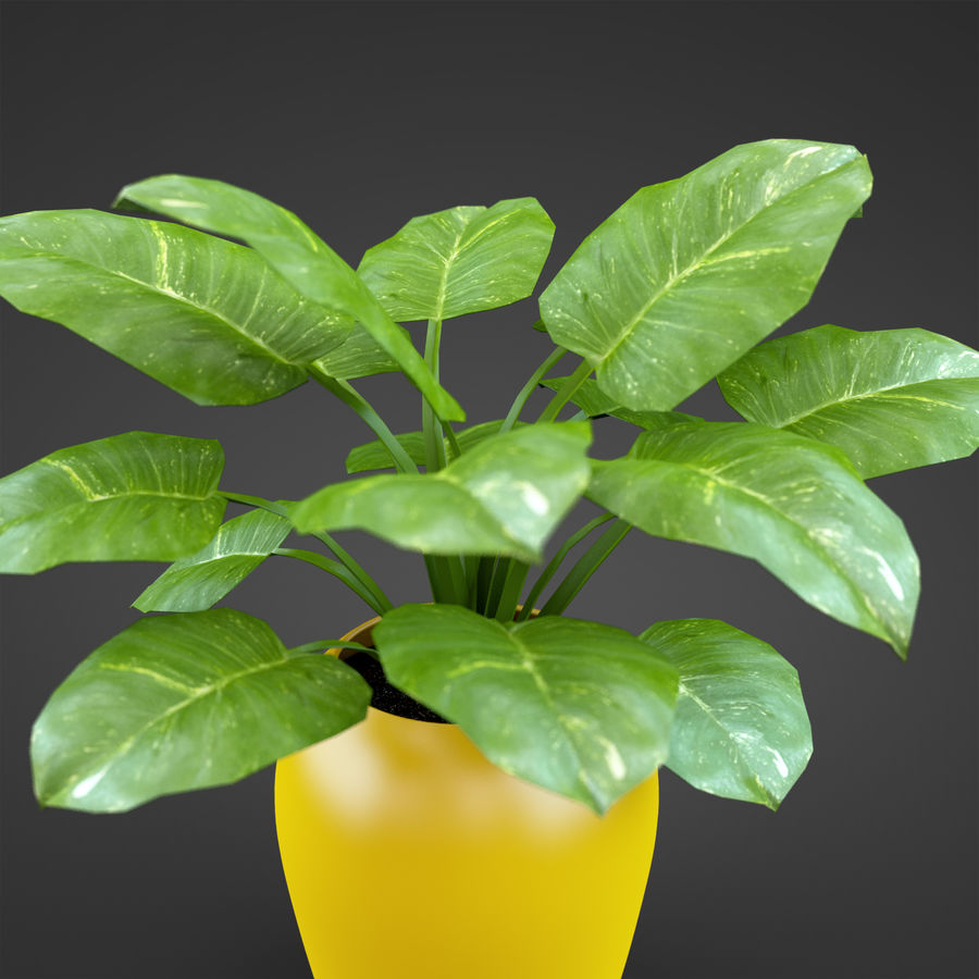 Set Home Plant royalty-free 3d model - Preview no. 20