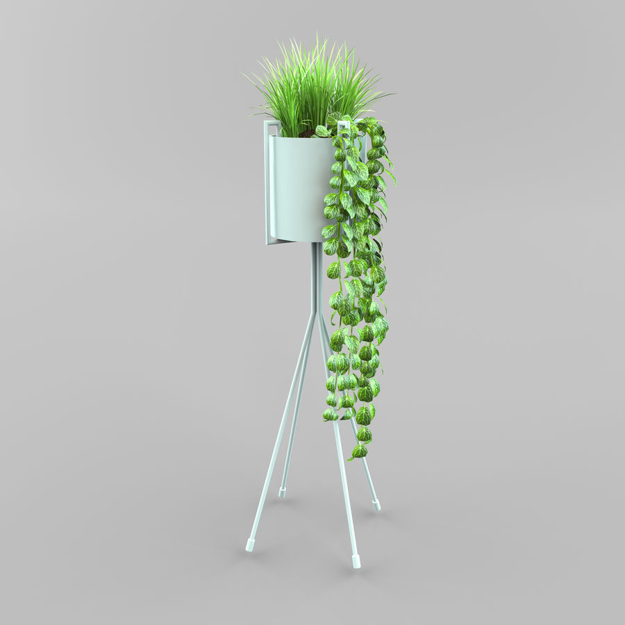 Set Home Plant royalty-free 3d model - Preview no. 9