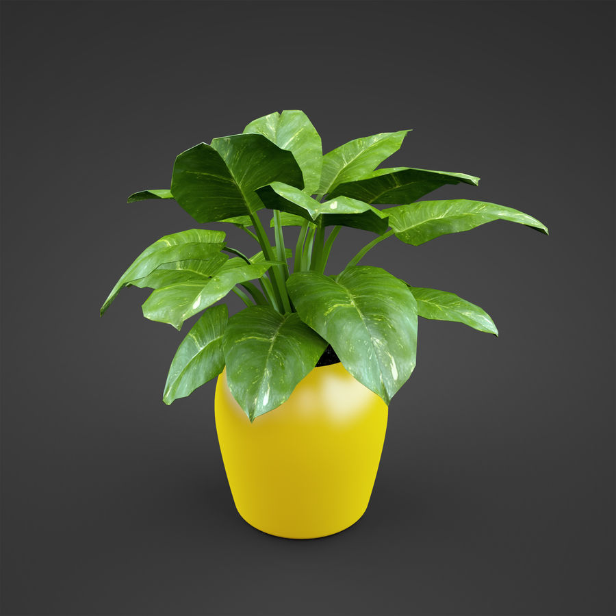 Set Home Plant royalty-free 3d model - Preview no. 19
