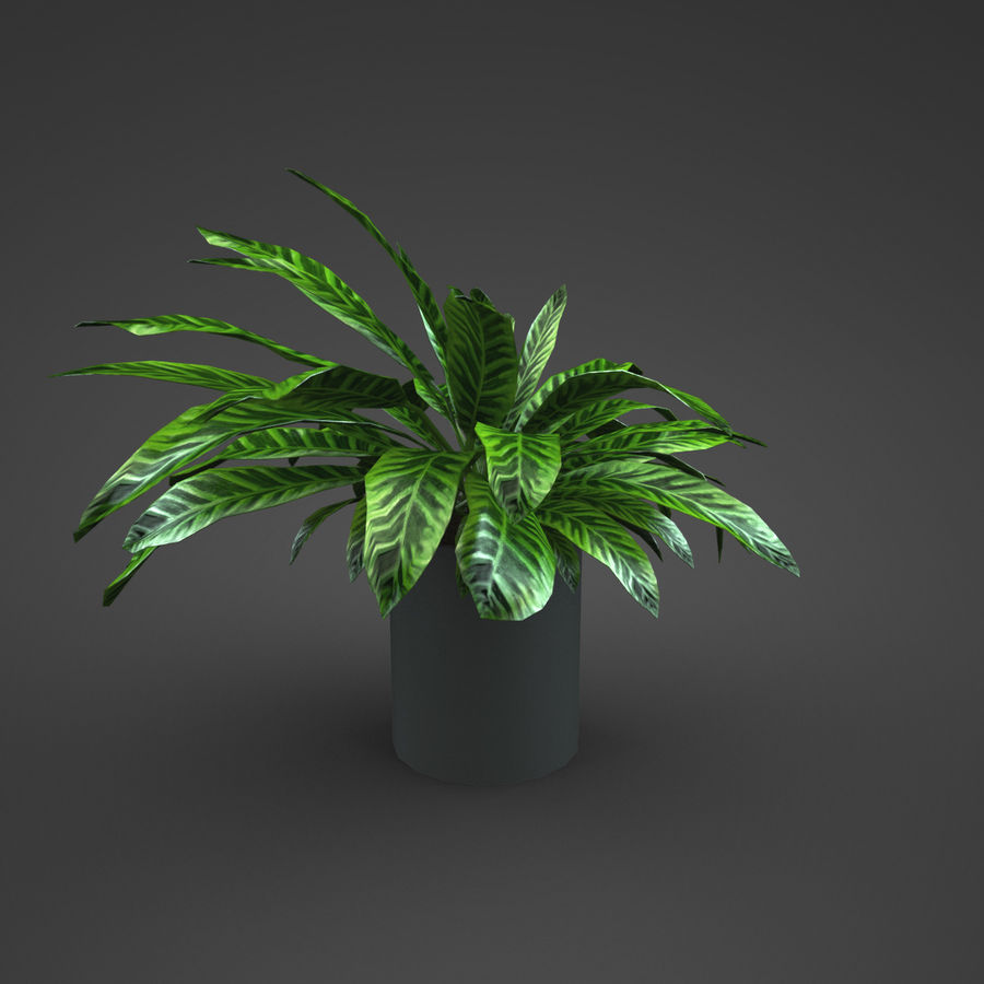 Set Home Plant royalty-free 3d model - Preview no. 4