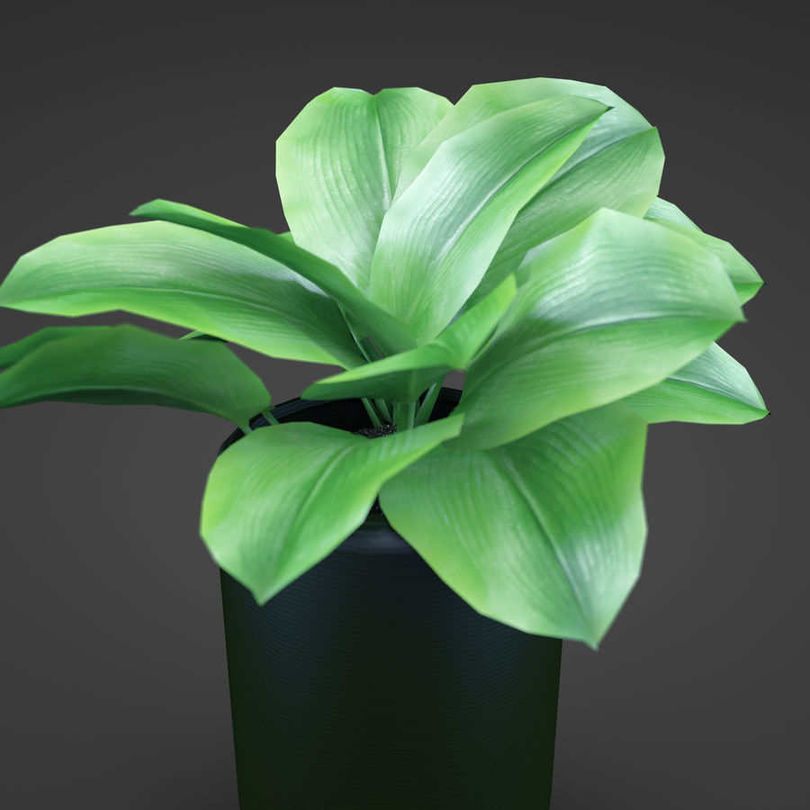 Set Home Plant royalty-free 3d model - Preview no. 38