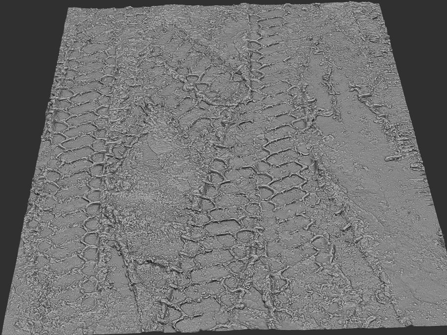 Tire Tracks Scan 16K royalty-free 3d model - Preview no. 10