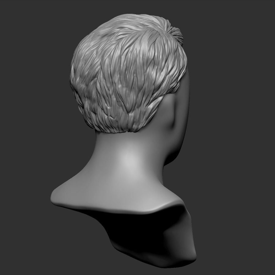 Beauty Man Hairstyle 4 royalty-free 3d model - Preview no. 7