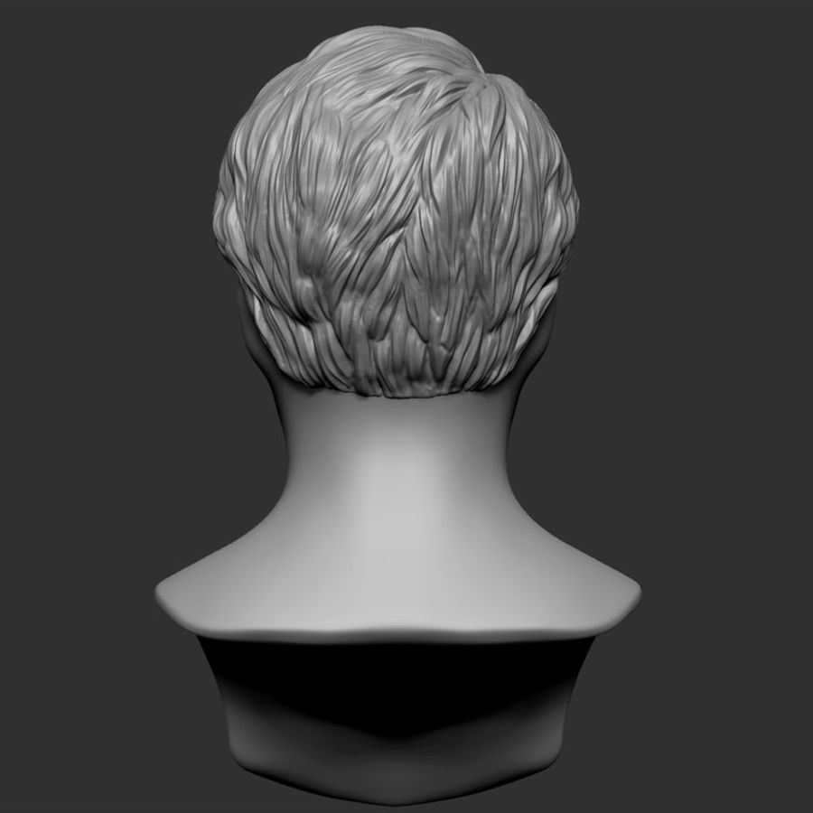 Beauty Man Hairstyle 4 royalty-free 3d model - Preview no. 6