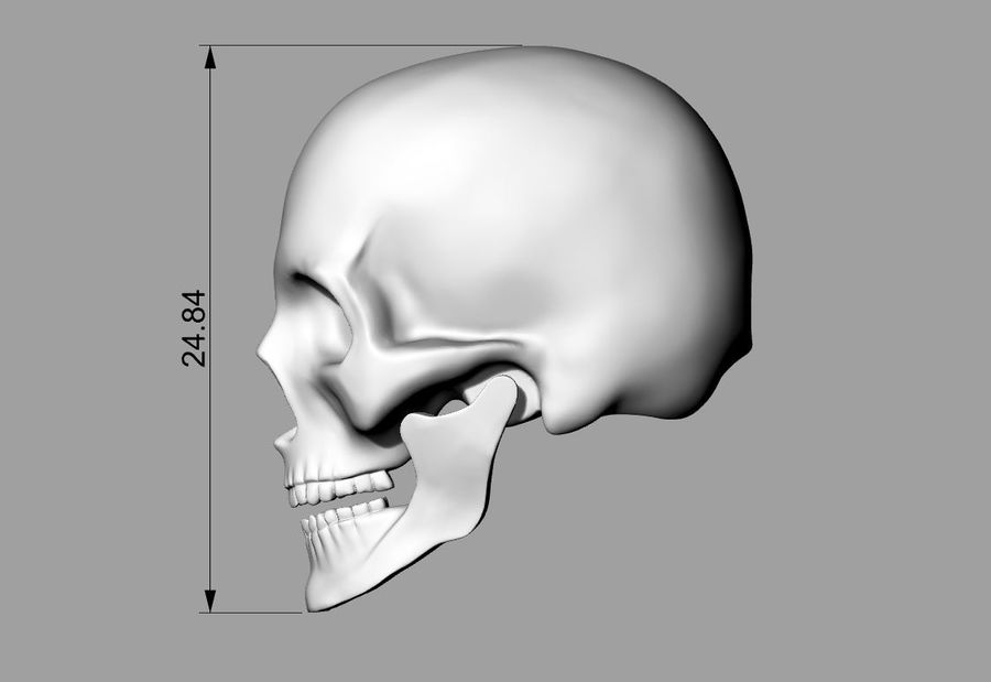 Realistic Skull pendant royalty-free 3d model - Preview no. 11