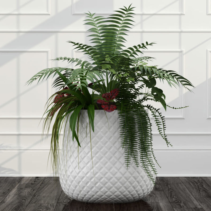 Room plants 11 royalty-free 3d model - Preview no. 4
