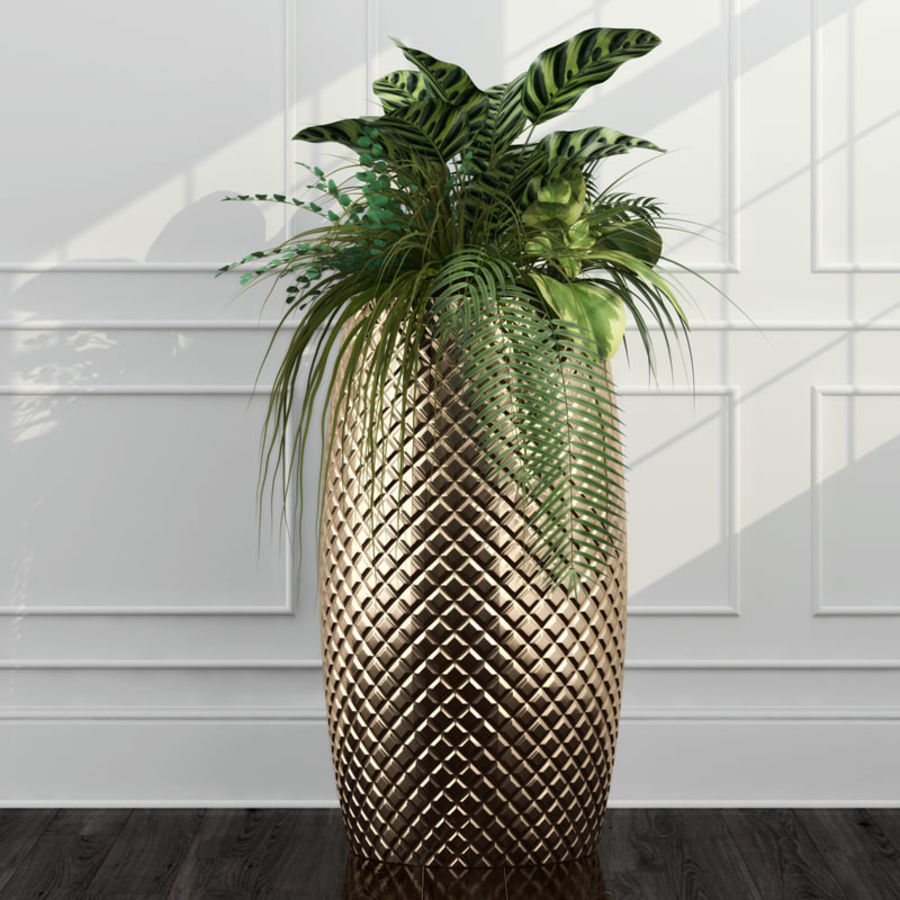 Room plants 11 royalty-free 3d model - Preview no. 2