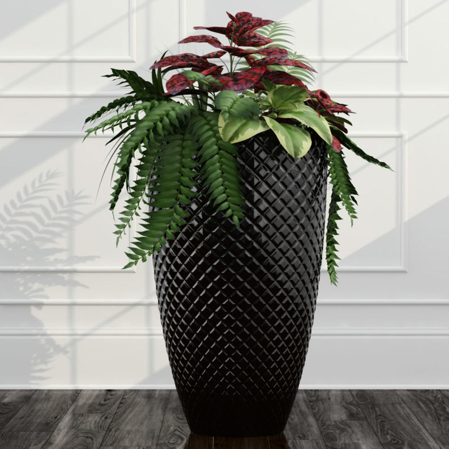 Room plants 11 royalty-free 3d model - Preview no. 3