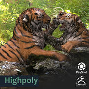 Tiger highres ZBrush Keyshot 3d model