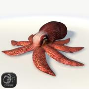 Coconut Octopus 3d model