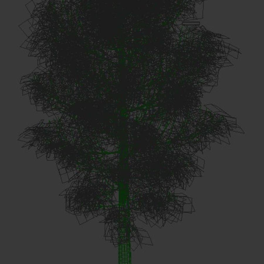 Wysokie drzewo royalty-free 3d model - Preview no. 4